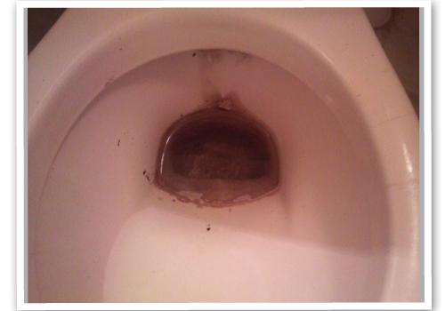 トイレの便器 ハウスクリーニング前