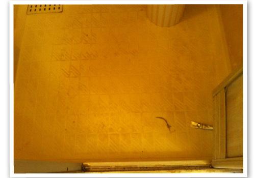 浴室の床 ハウスクリーニング前