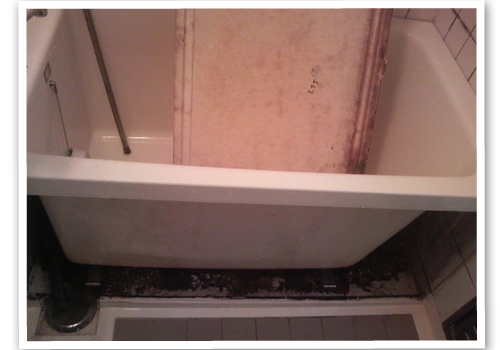 浴槽エプロン内部清掃前