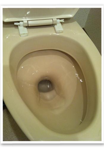 トイレ ハウスクリーニング後